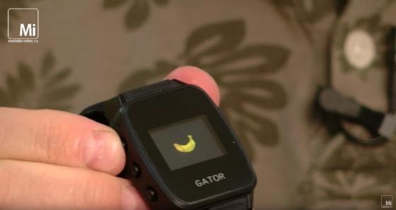 Caref Watch